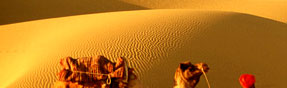 Rajasthan tours, Tour packages